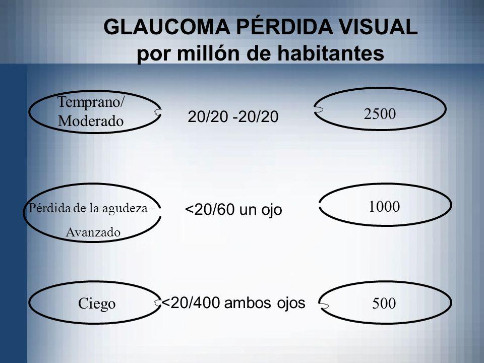 GLAUCOMA PÉRDIDA VISUAL por millón de habitantes
