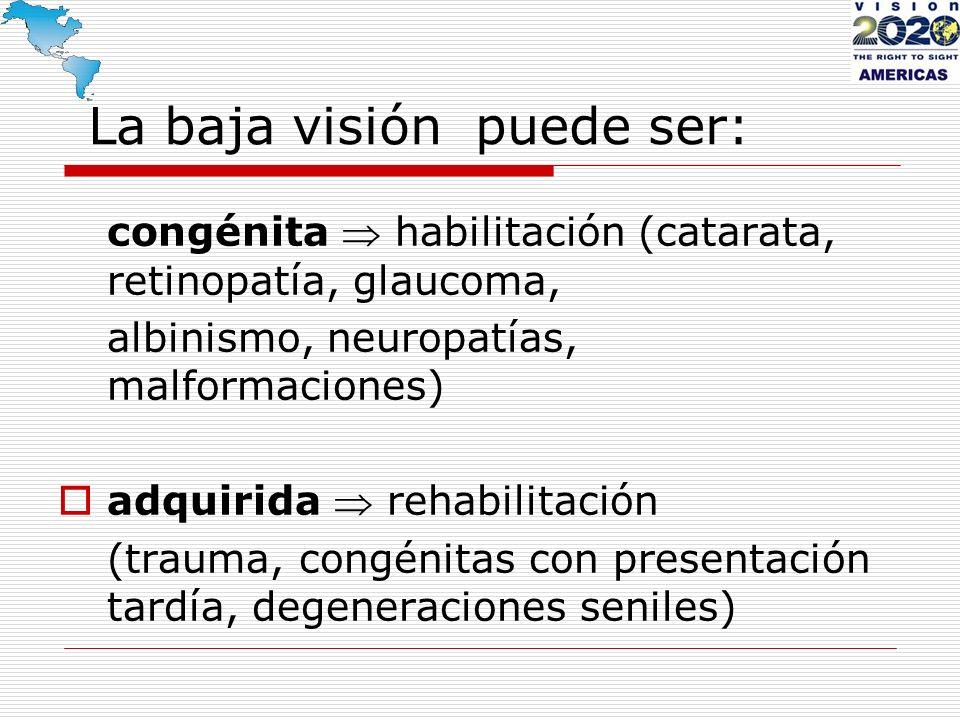 La baja visión puede ser:
