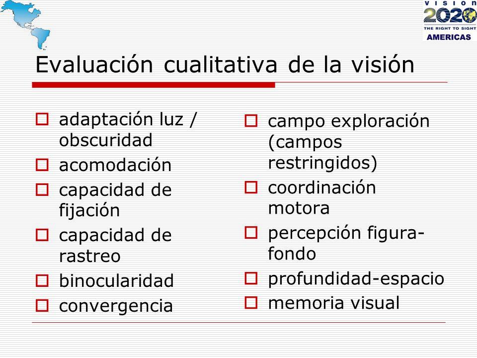 Evaluación cualitativa de la visión