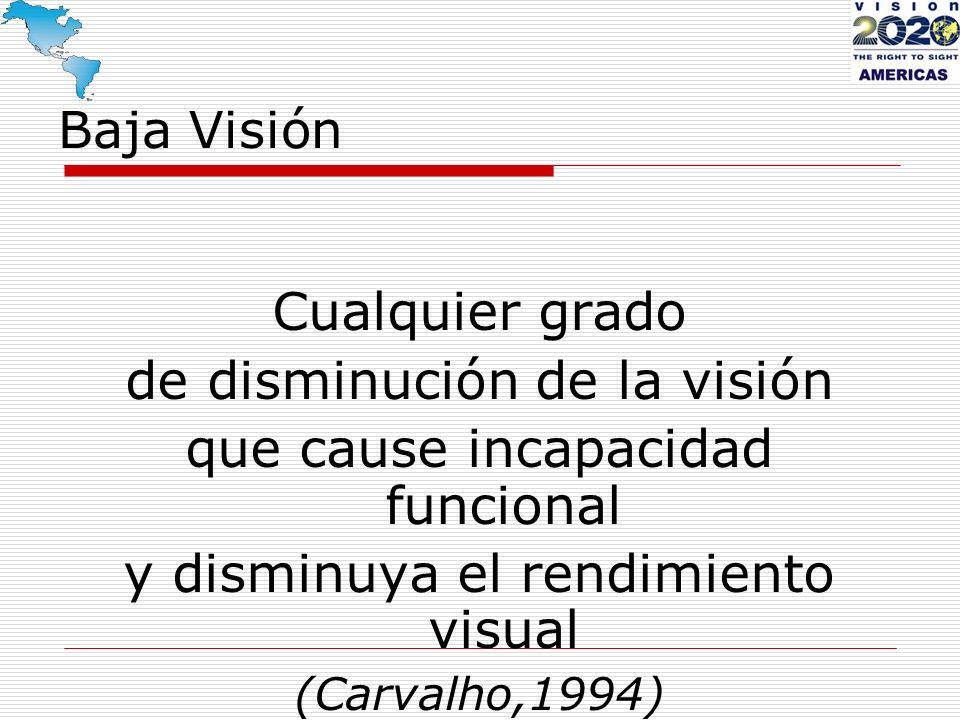 de disminución de la visión que cause incapacidad funcional