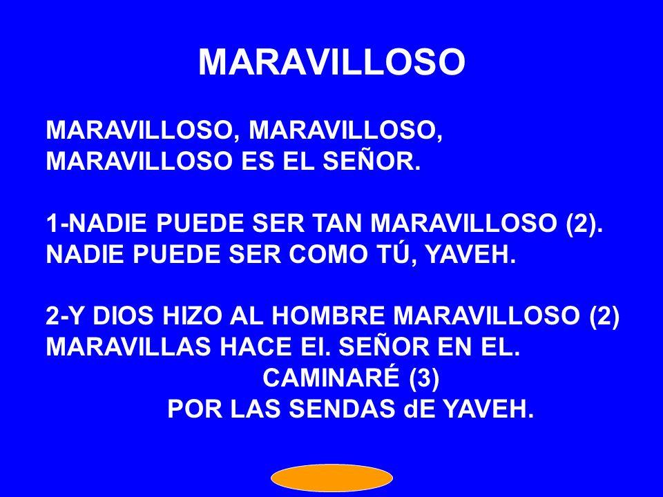 MARAVILLOSO MARAVILLOSO, MARAVILLOSO, MARAVILLOSO ES EL SEÑOR.