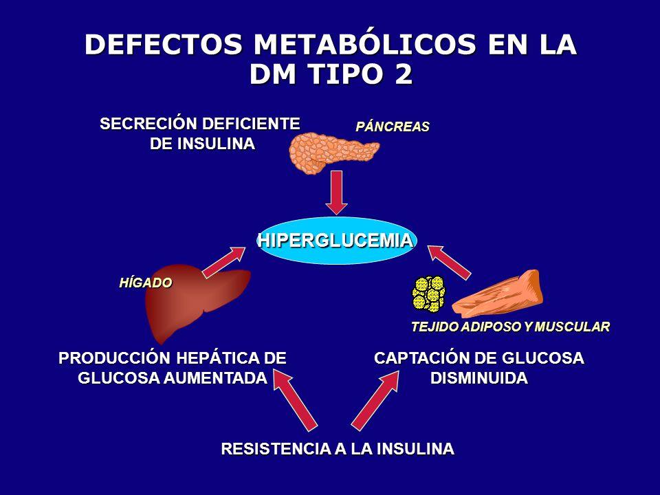 DEFECTOS METABÓLICOS EN LA DM TIPO 2