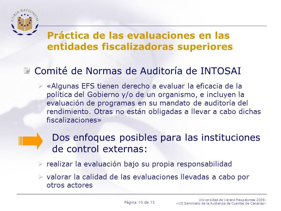 Comité de Normas de Auditoría de INTOSAI