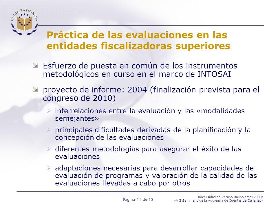 Práctica de las evaluaciones en las entidades fiscalizadoras superiores
