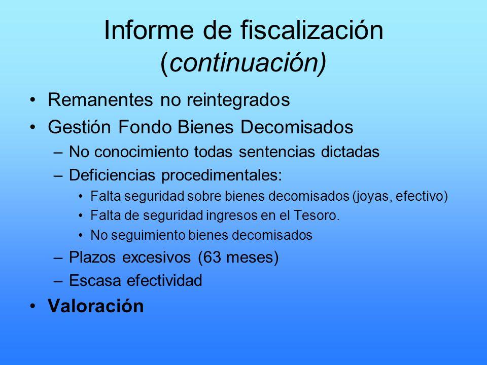 Informe de fiscalización (continuación)