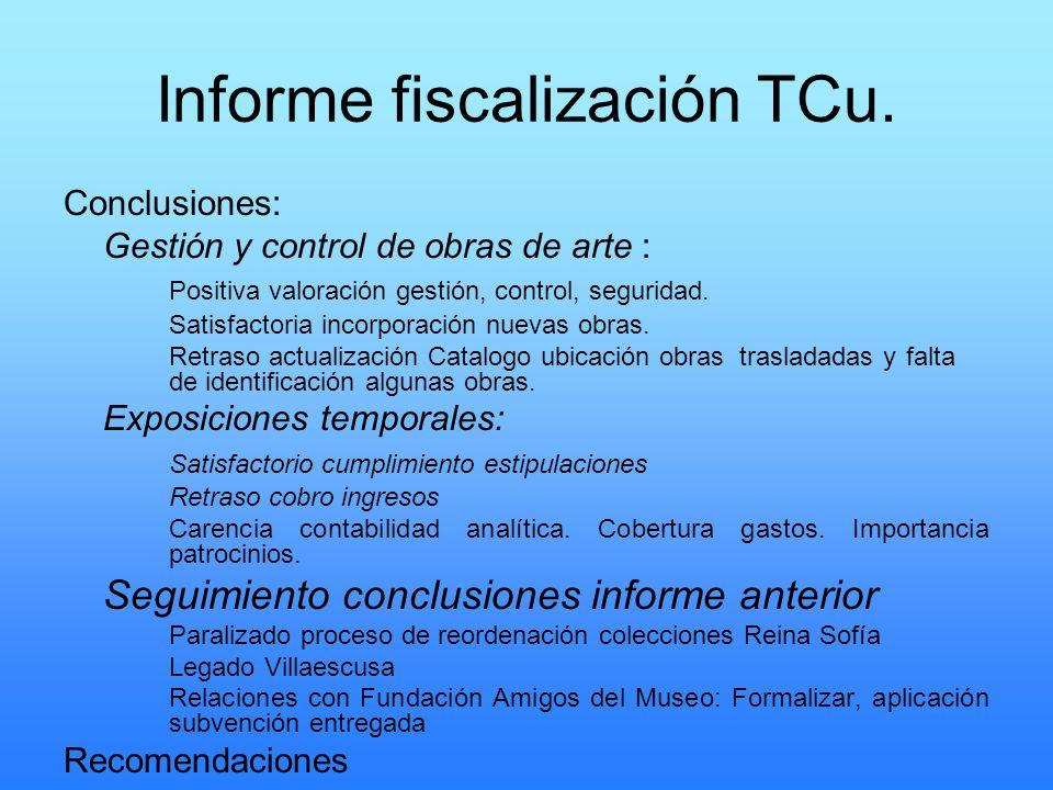 Informe fiscalización TCu.