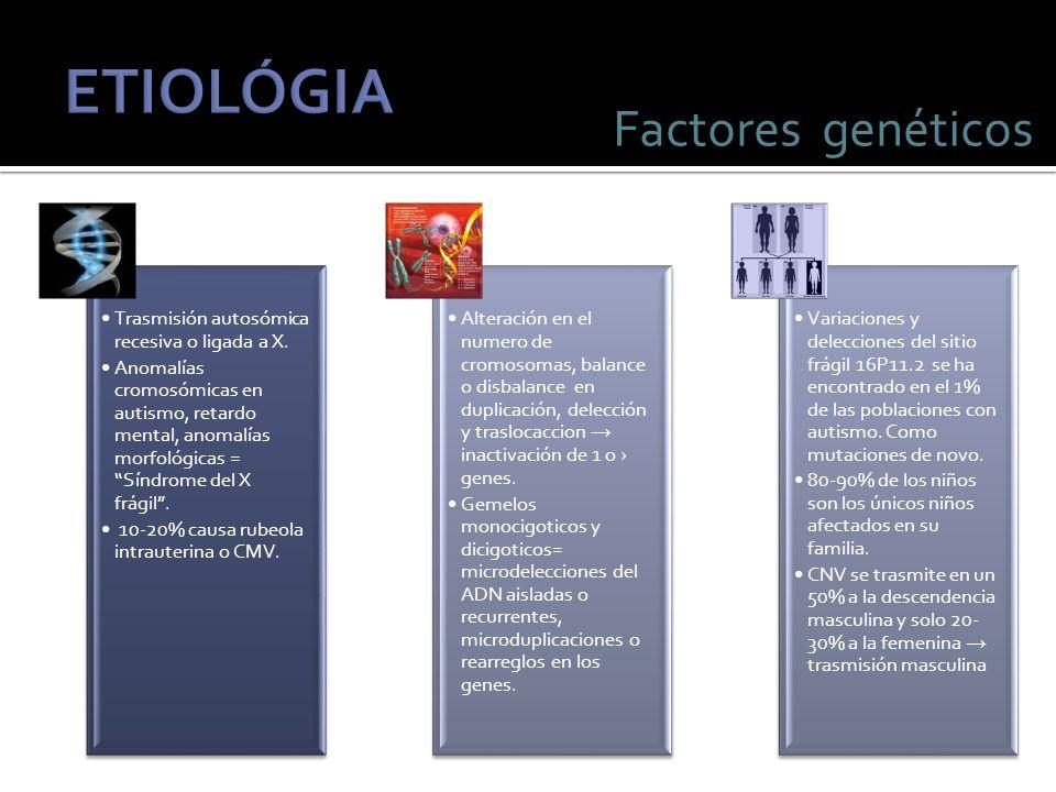 ETIOLÓGIA Factores genéticos