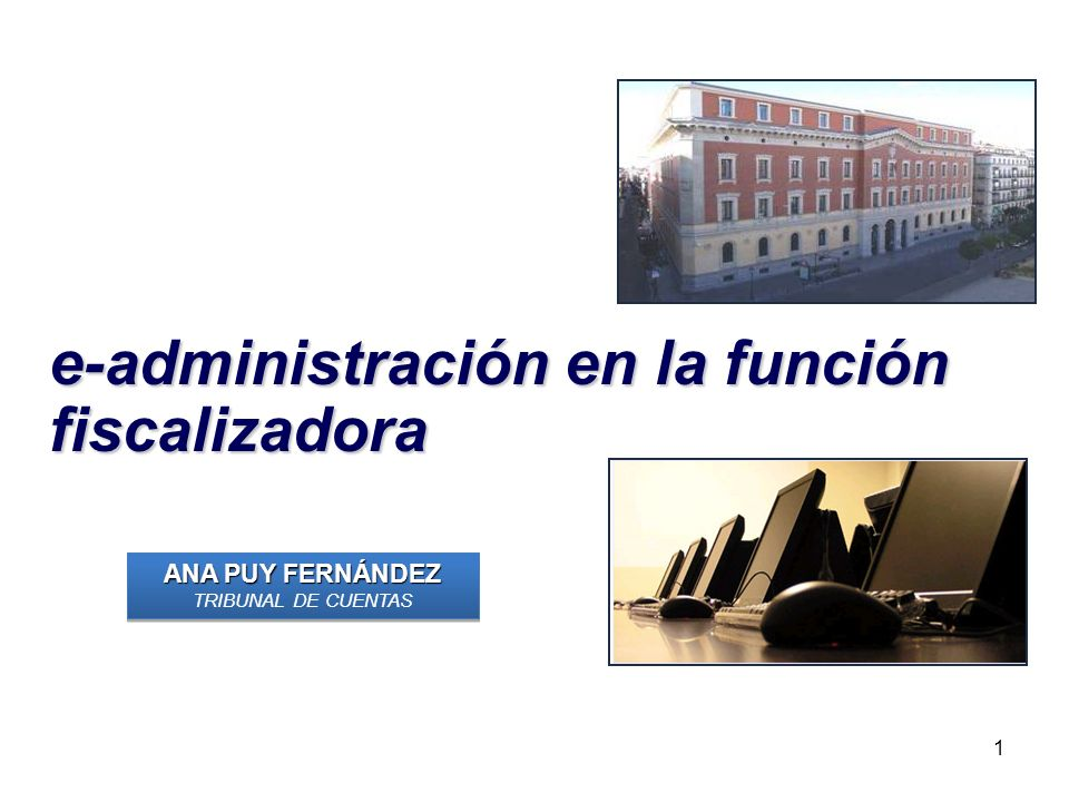 e-administración en la función fiscalizadora