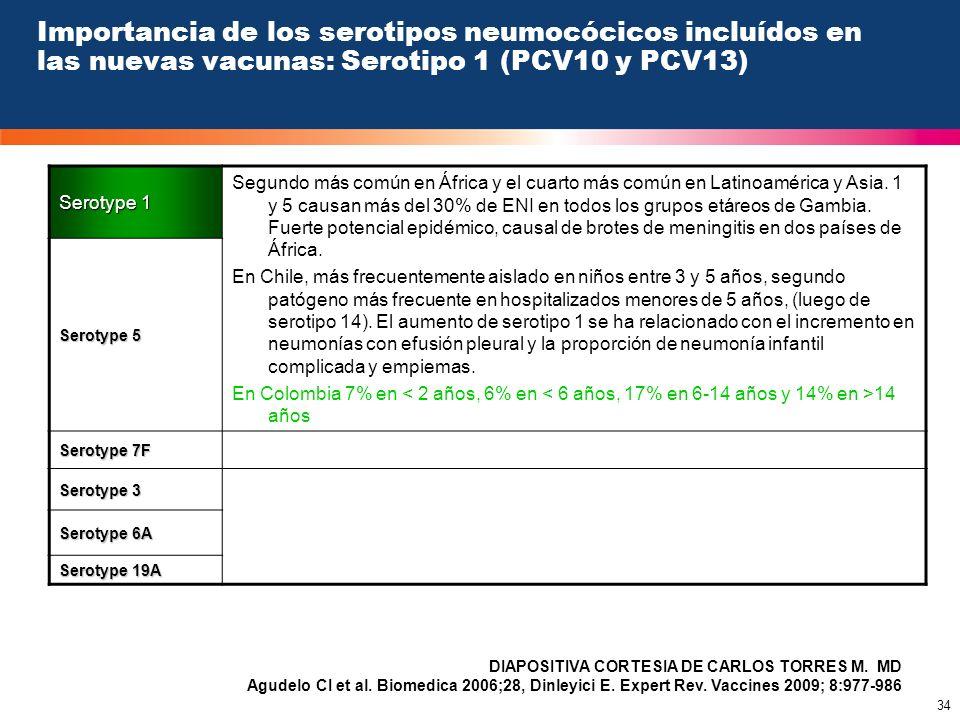 Importancia de los serotipos neumocócicos incluídos en las nuevas vacunas: Serotipo 1 (PCV10 y PCV13)
