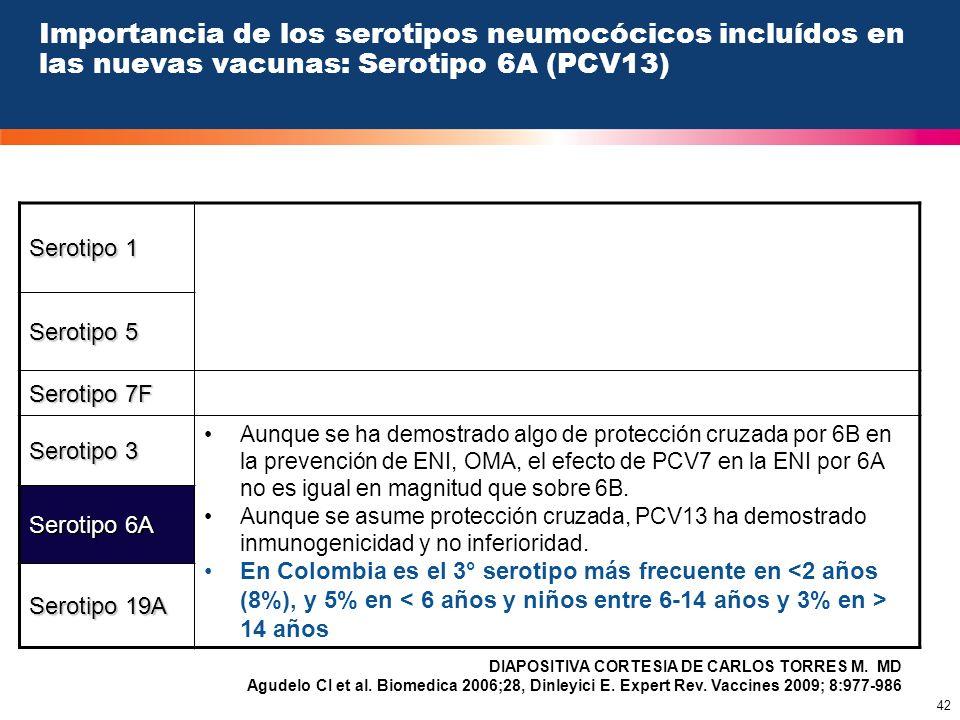 Importancia de los serotipos neumocócicos incluídos en las nuevas vacunas: Serotipo 6A (PCV13)