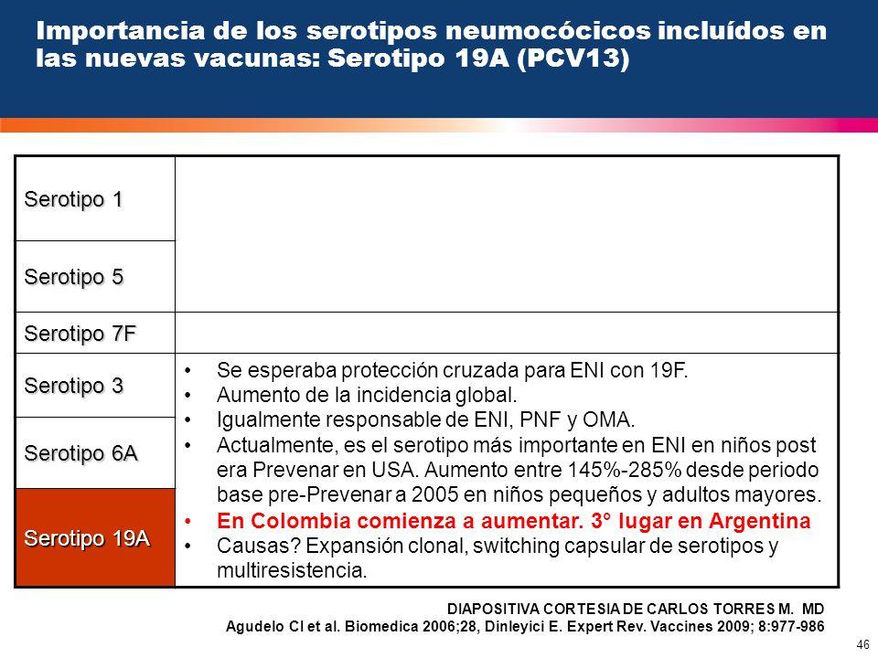 Importancia de los serotipos neumocócicos incluídos en las nuevas vacunas: Serotipo 19A (PCV13)