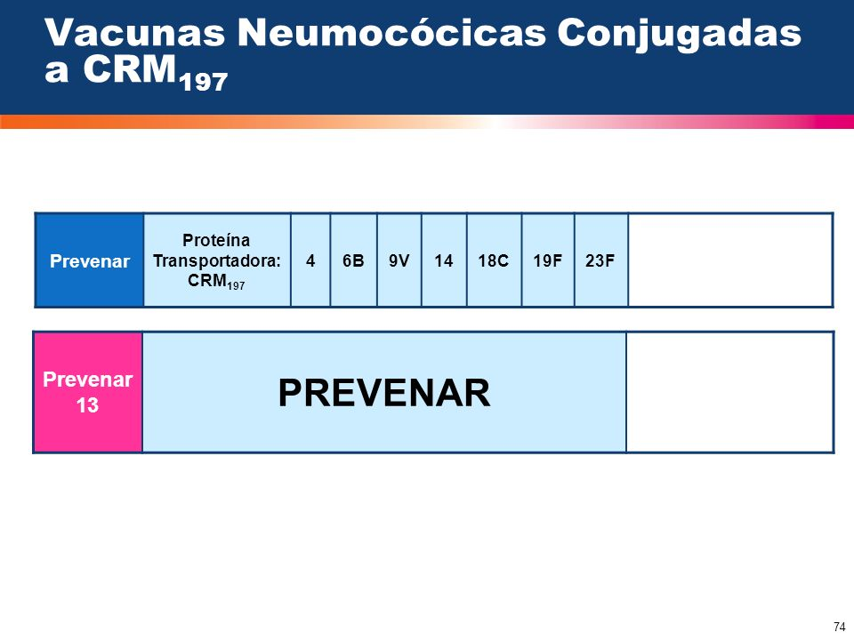 Vacunas Neumocócicas Conjugadas a CRM197