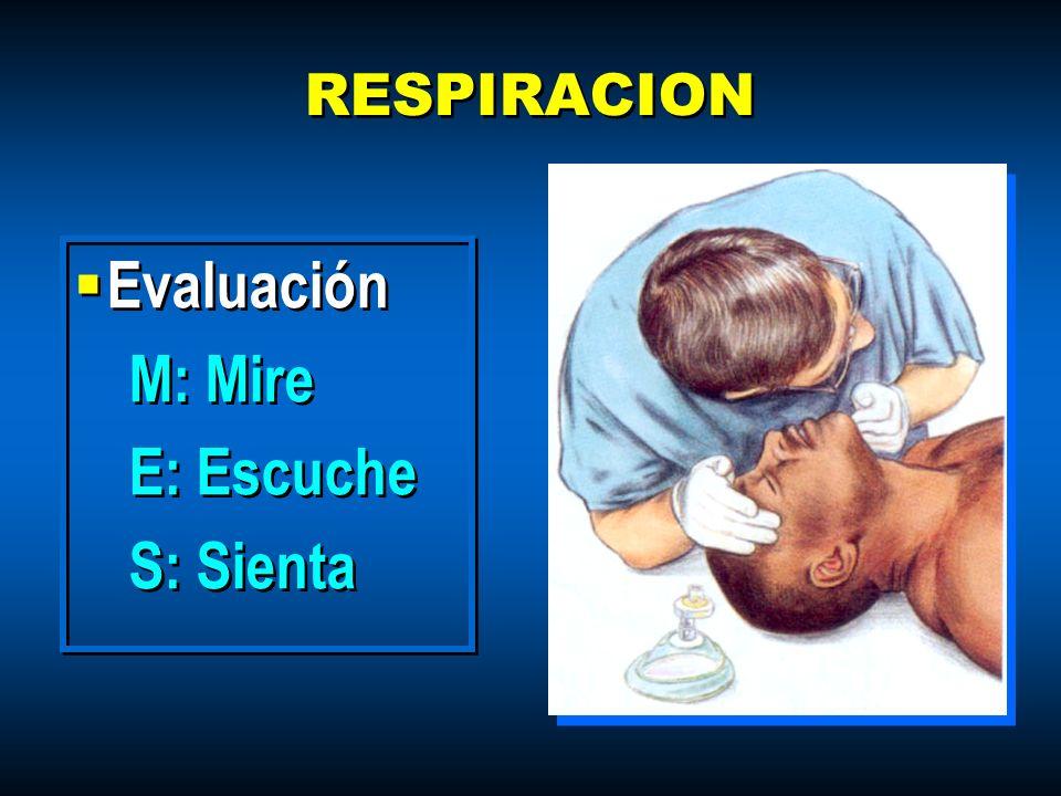 RESPIRACION Evaluación M: Mire E: Escuche S: Sienta