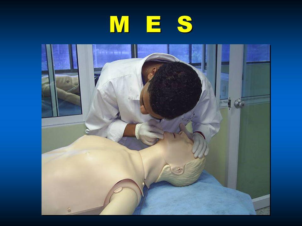 M E S