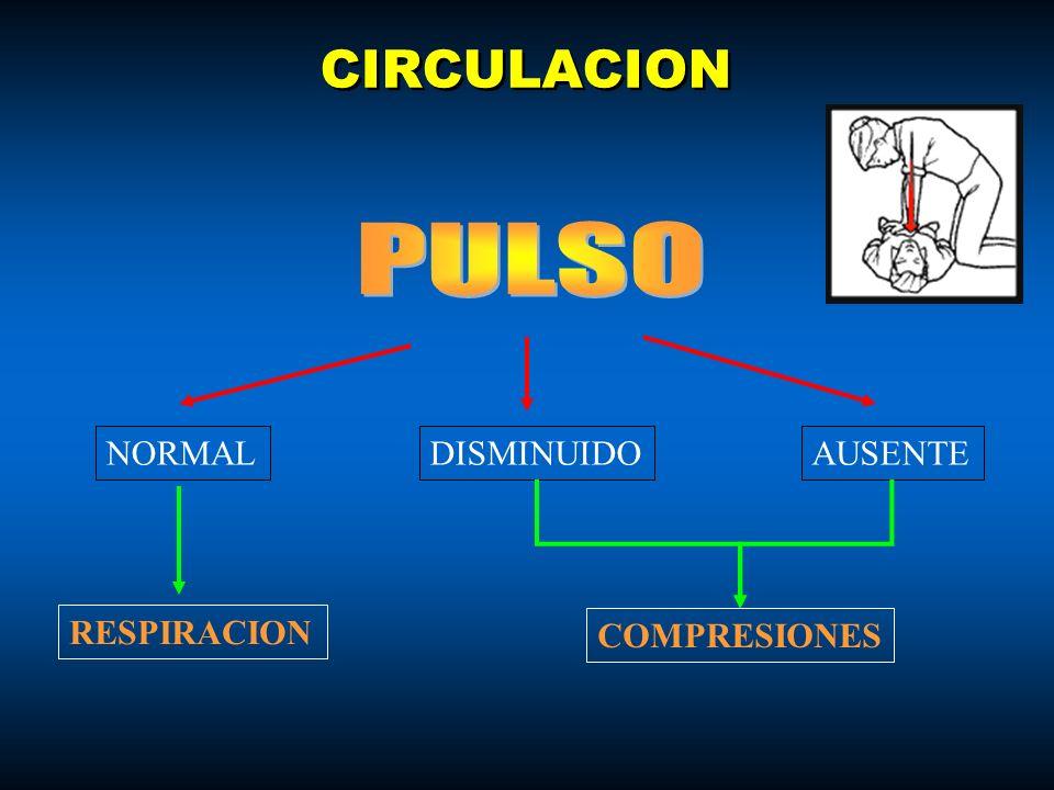 CIRCULACION PULSO NORMAL DISMINUIDO AUSENTE RESPIRACION COMPRESIONES