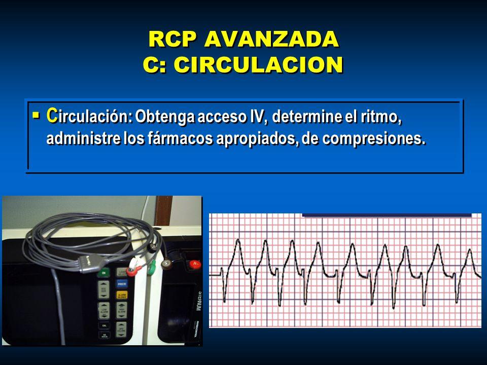 RCP AVANZADA C: CIRCULACION