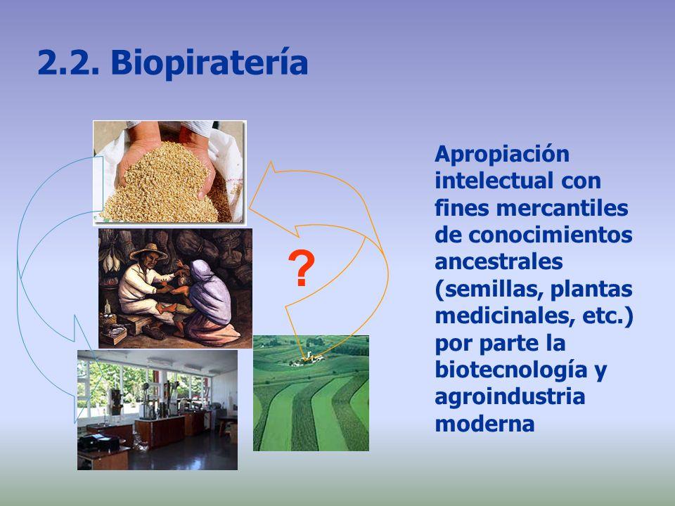2.2. Biopiratería