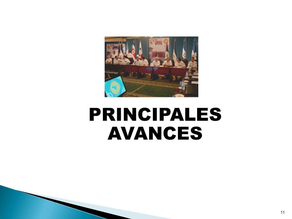 PRINCIPALES AVANCES