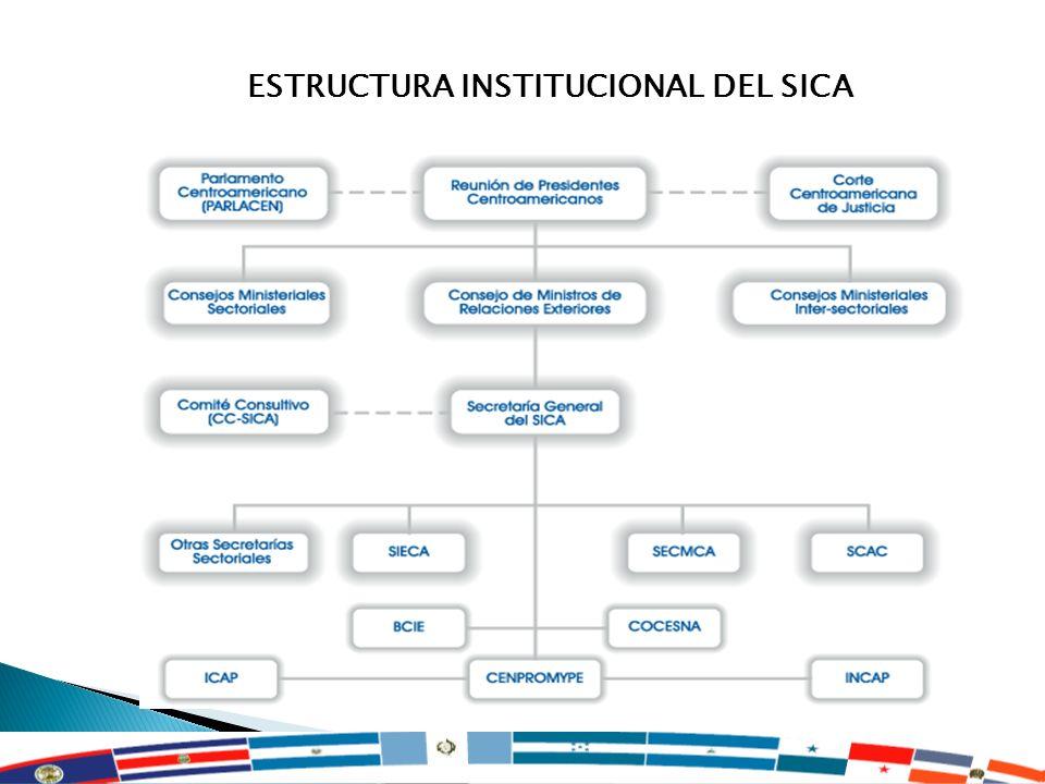 ESTRUCTURA INSTITUCIONAL DEL SICA