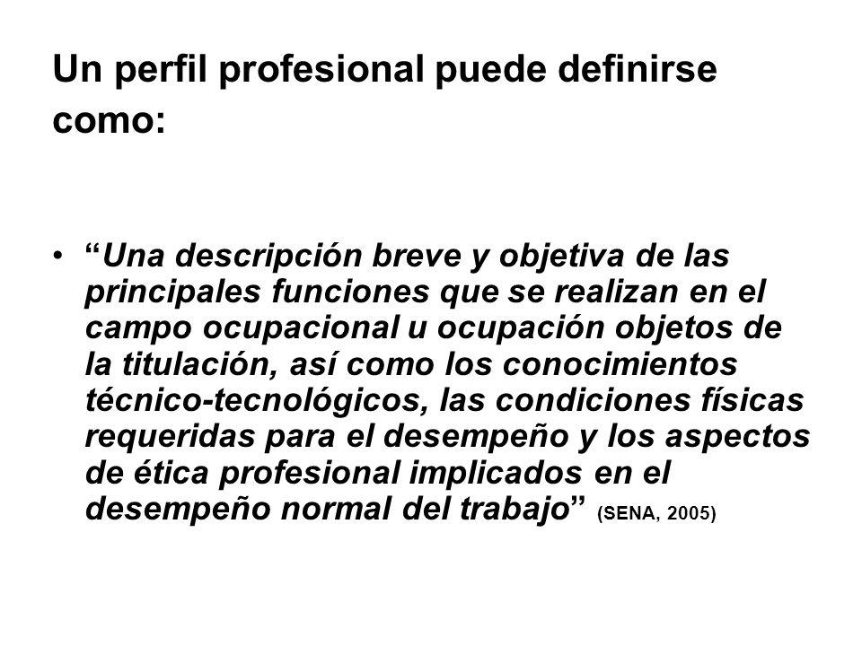 Un perfil profesional puede definirse como:
