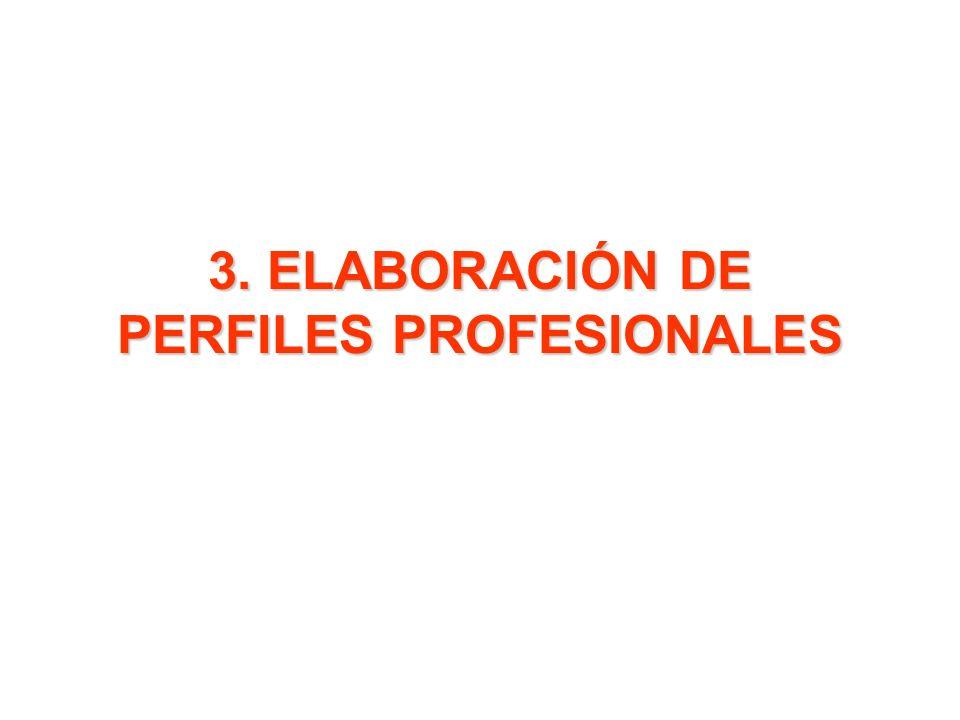 3. ELABORACIÓN DE PERFILES PROFESIONALES