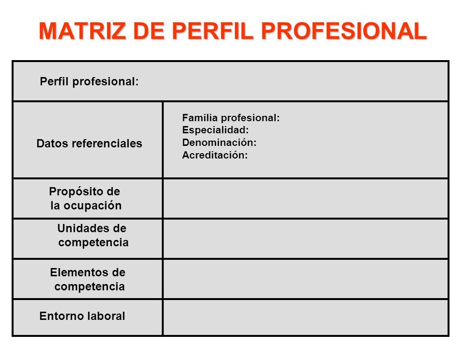 MATRIZ DE PERFIL PROFESIONAL