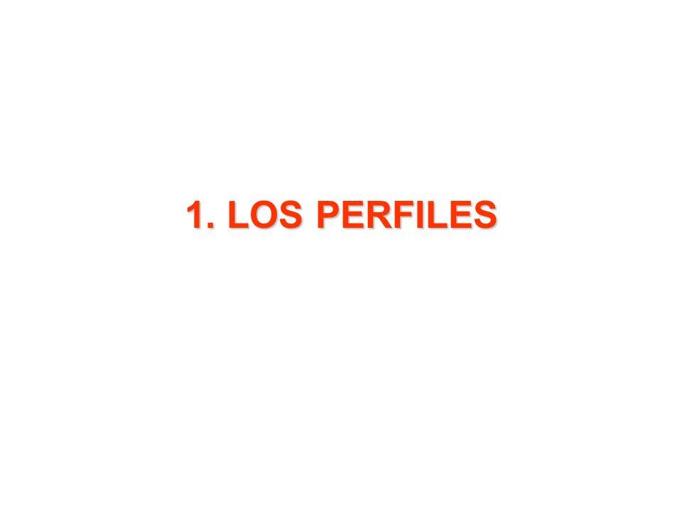 1. LOS PERFILES