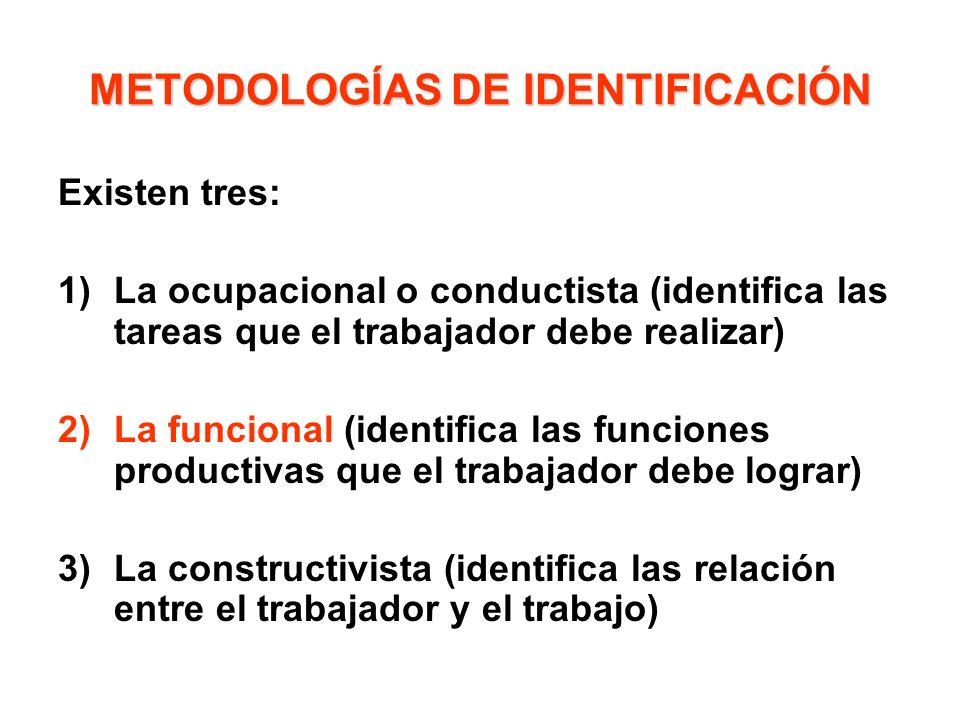 METODOLOGÍAS DE IDENTIFICACIÓN