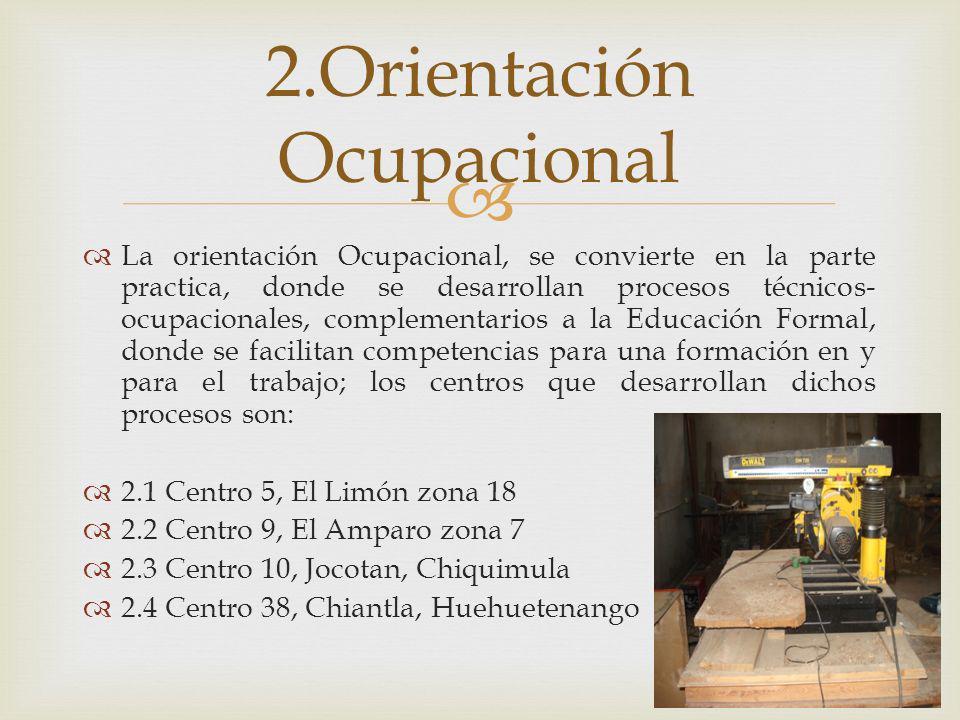 2.Orientación Ocupacional