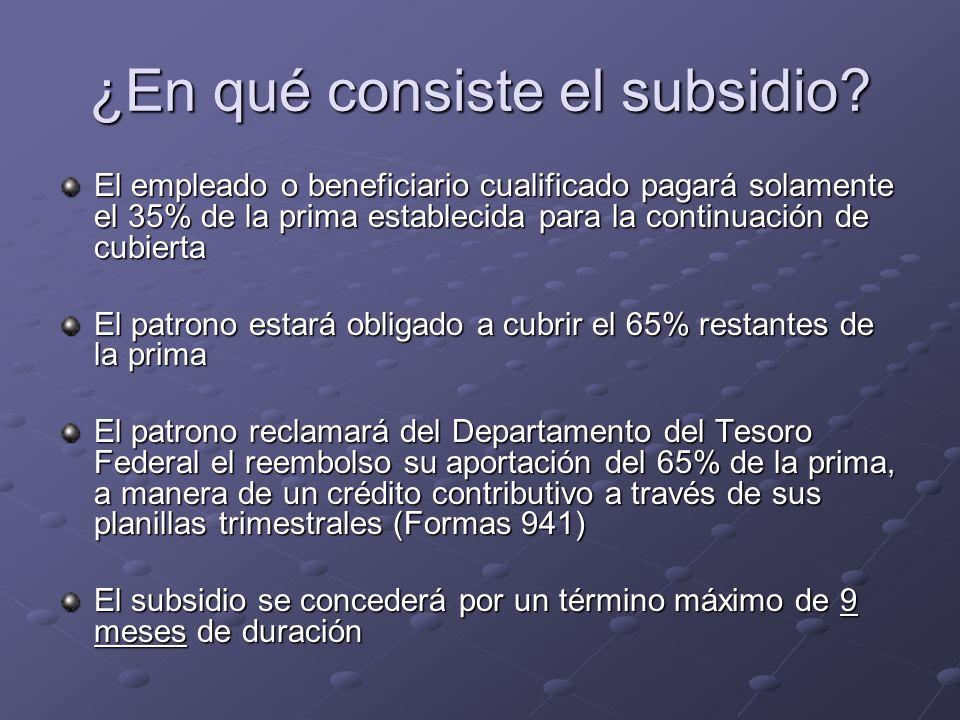 ¿En qué consiste el subsidio