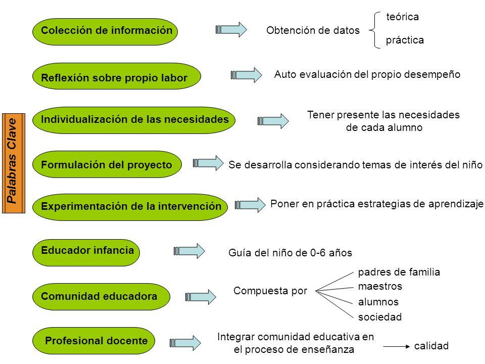 Palabras Clave teórica Colección de información Obtención de datos