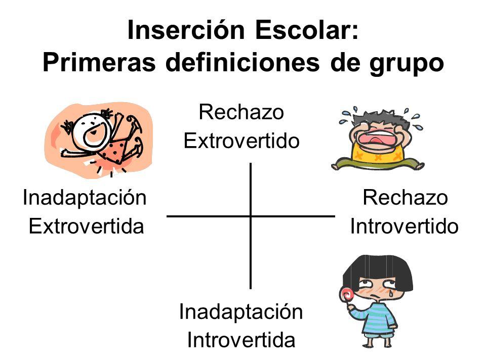 Inserción Escolar: Primeras definiciones de grupo