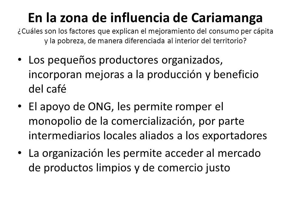 En la zona de influencia de Cariamanga ¿Cuáles son los factores que explican el mejoramiento del consumo per cápita y la pobreza, de manera diferenciada al interior del territorio