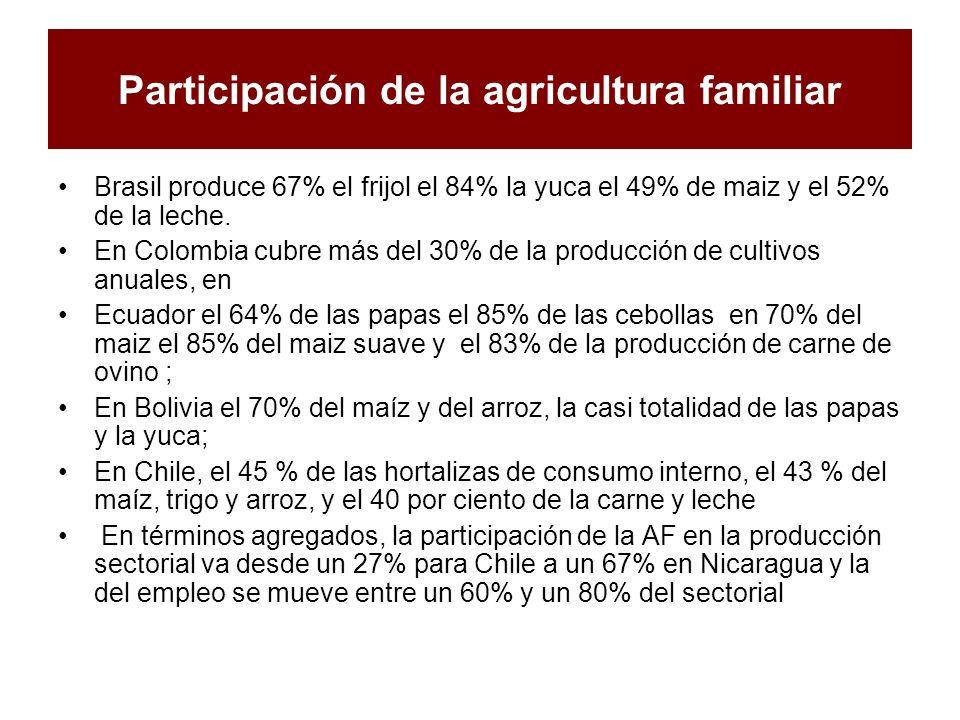 Participación de la agricultura familiar