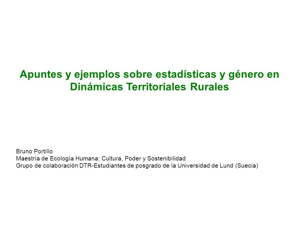 Apuntes y ejemplos sobre estadísticas y género en Dinámicas Territoriales Rurales
