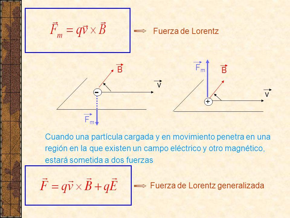 - Fuerza de Lorentz Fm B B v v + Fm