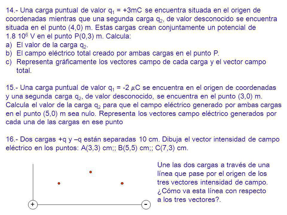 14.- Una carga puntual de valor q1 = +3mC se encuentra situada en el origen de