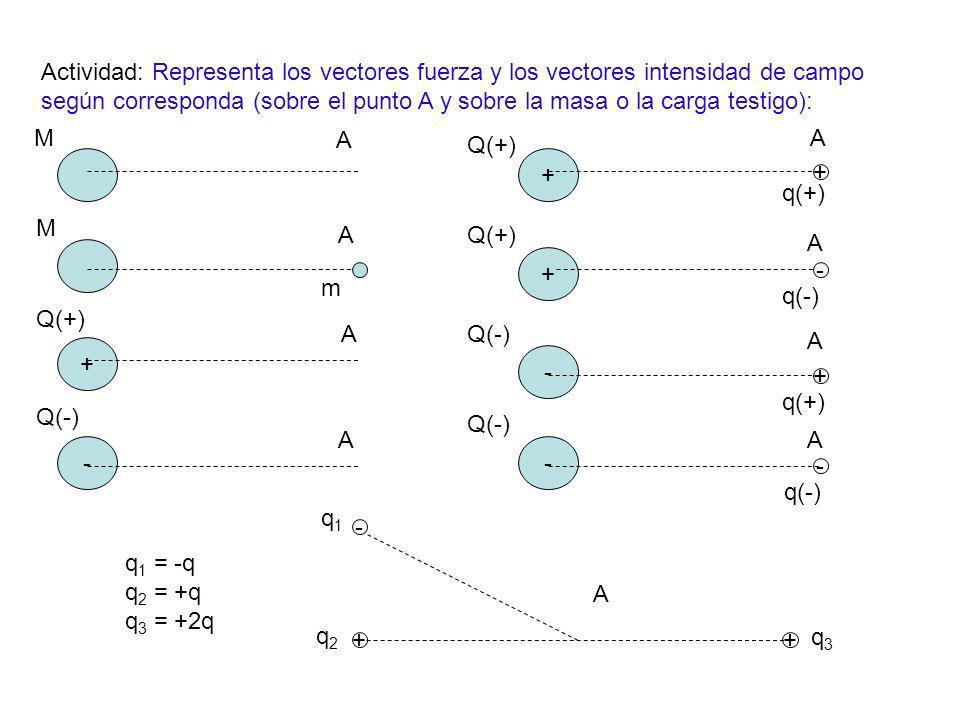 Actividad: Representa los vectores fuerza y los vectores intensidad de campo