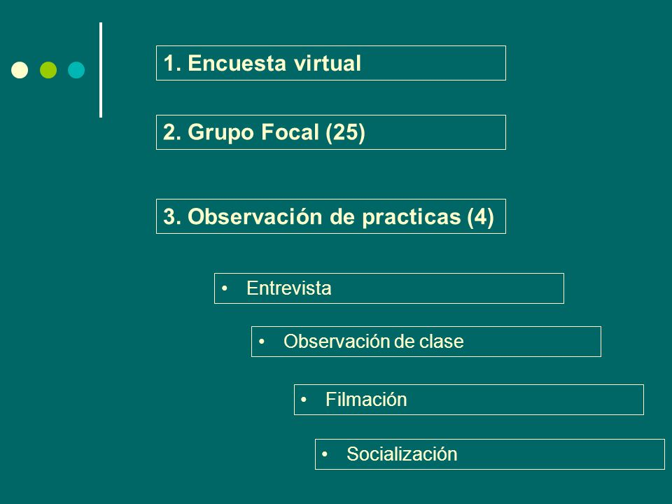 3. Observación de practicas (4)