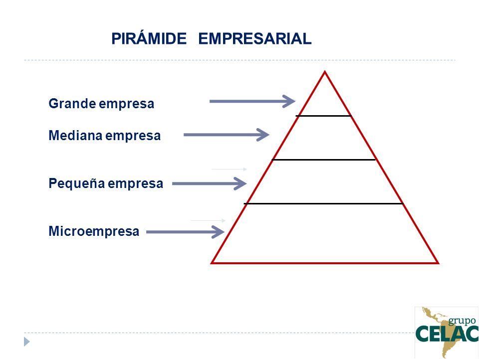 Grande empresa Mediana empresa Pequeña empresa Microempresa