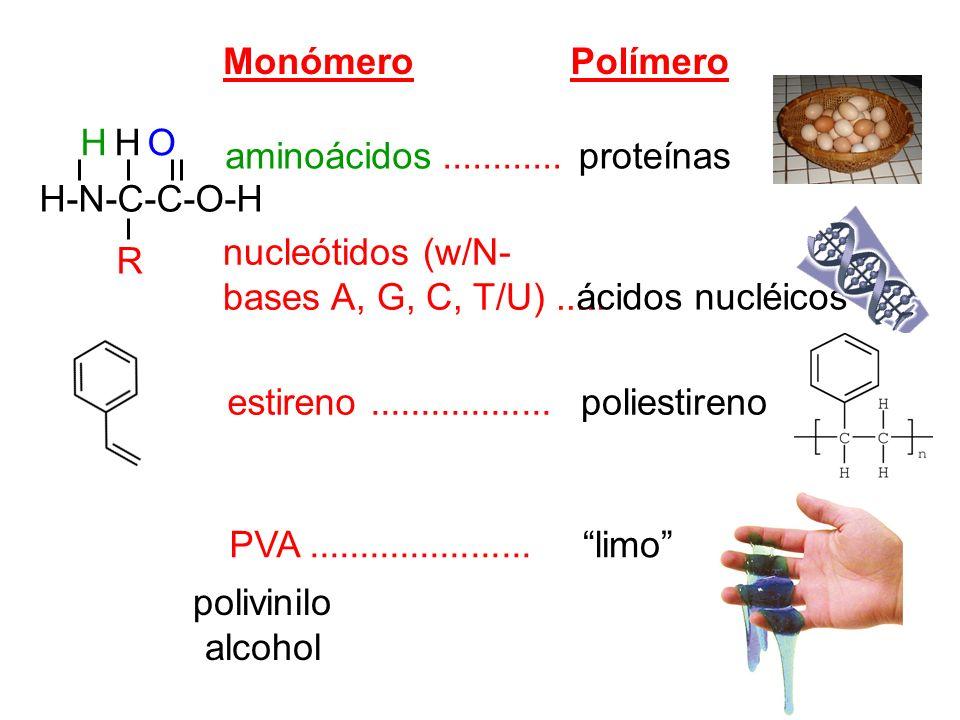 MonómeroPolímero. H-N-C-C-O-H. H H O. R. aminoácidos ............ proteínas. nucleótidos (w/N- bases A, G, C, T/U) .....