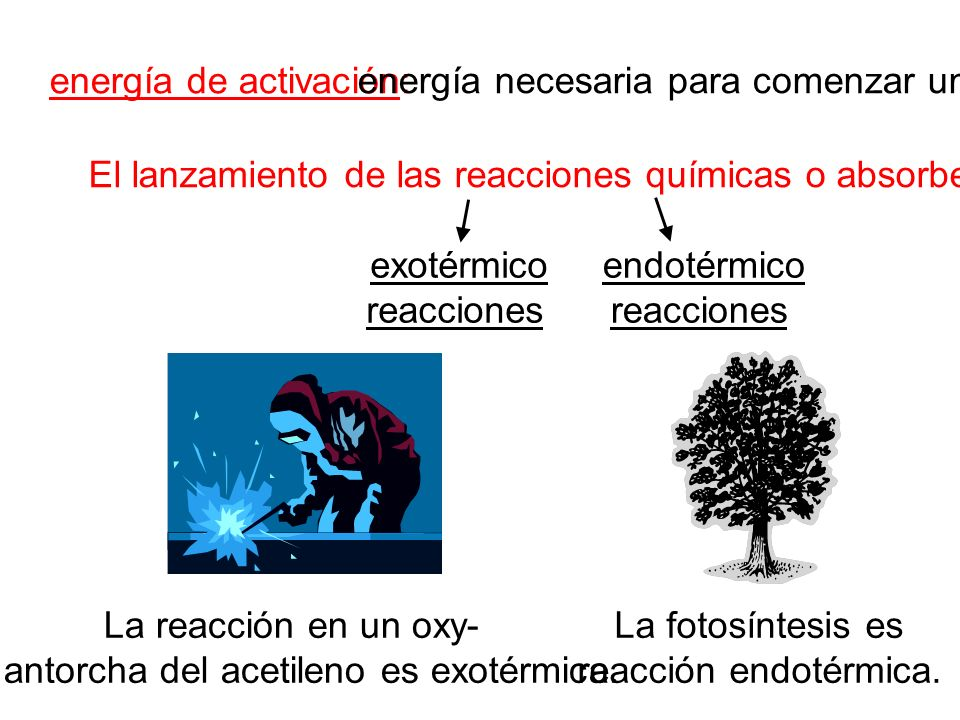 la antorcha del acetileno es exotérmica.