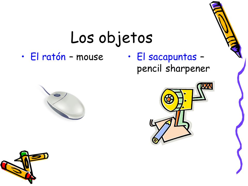 Los objetos El ratón – mouse El sacapuntas – pencil sharpener