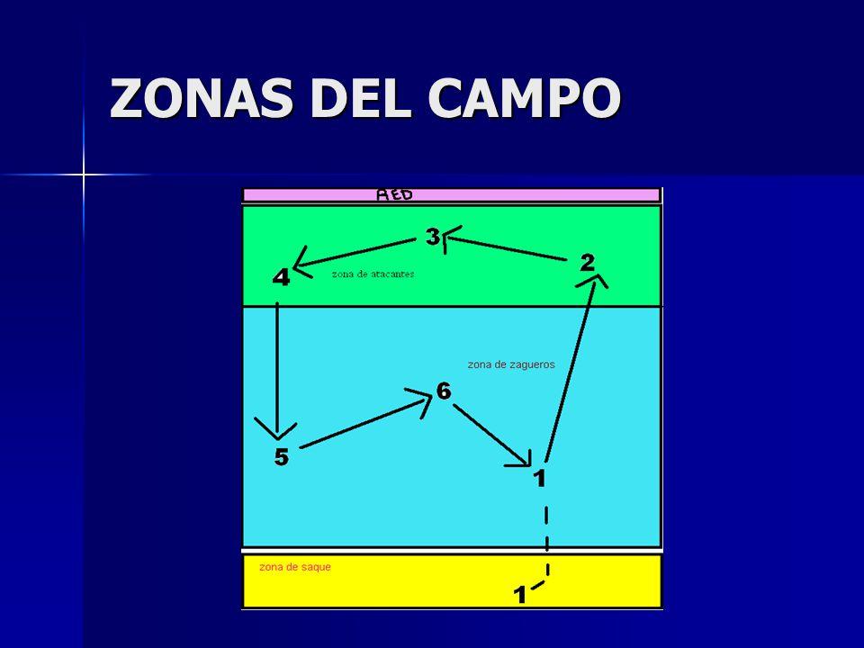 ZONAS DEL CAMPO