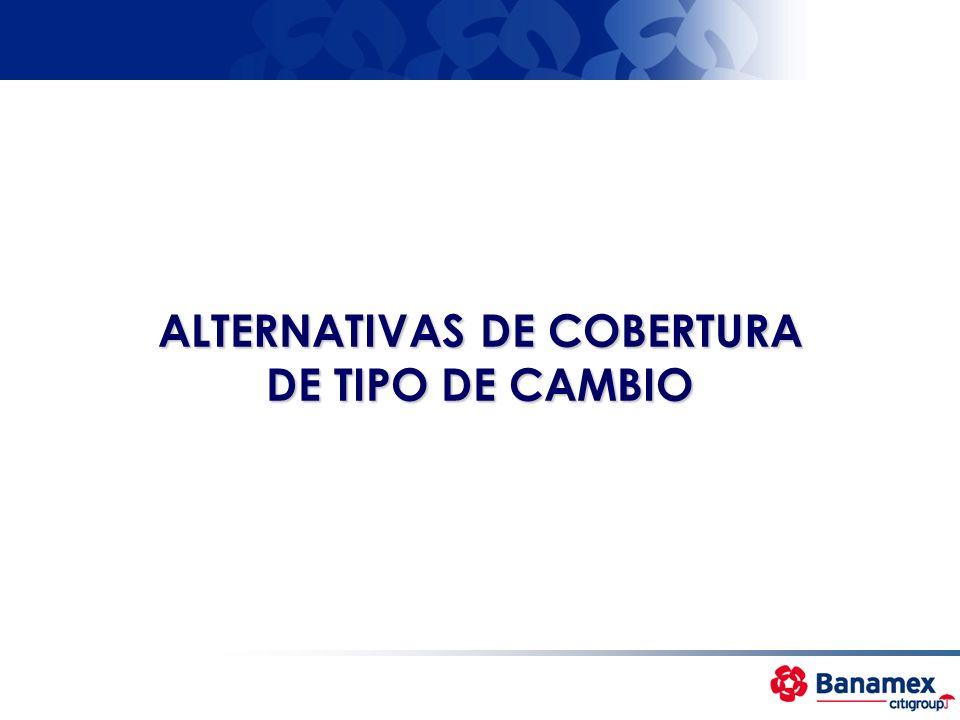 ALTERNATIVAS DE COBERTURA DE TIPO DE CAMBIO