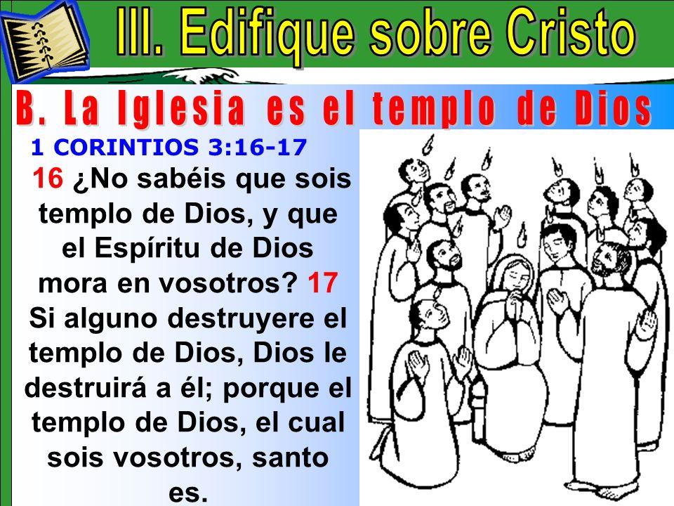 Edifique Sobre Cristo B
