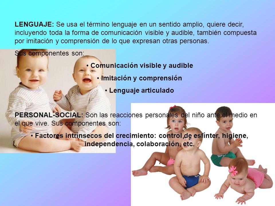 Comunicación visible y audible Imitación y comprensión