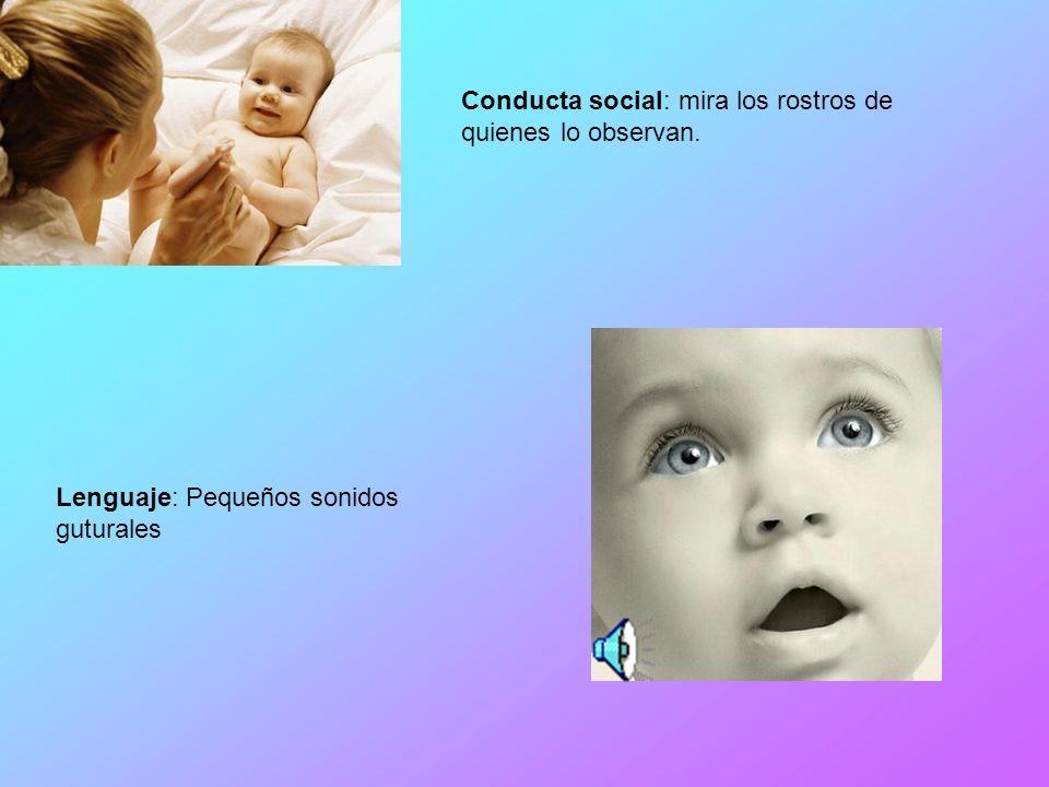 Conducta social: mira los rostros de quienes lo observan.