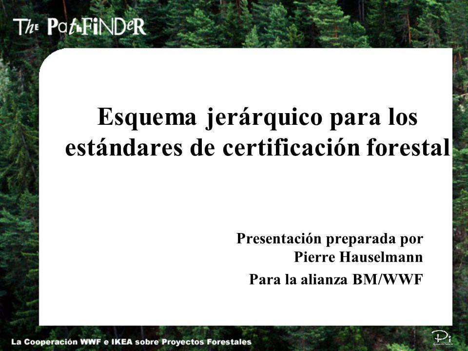 Esquema jerárquico para los estándares de certificación forestal