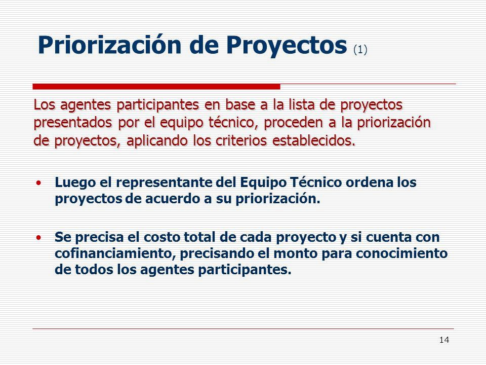Priorización de Proyectos (1)